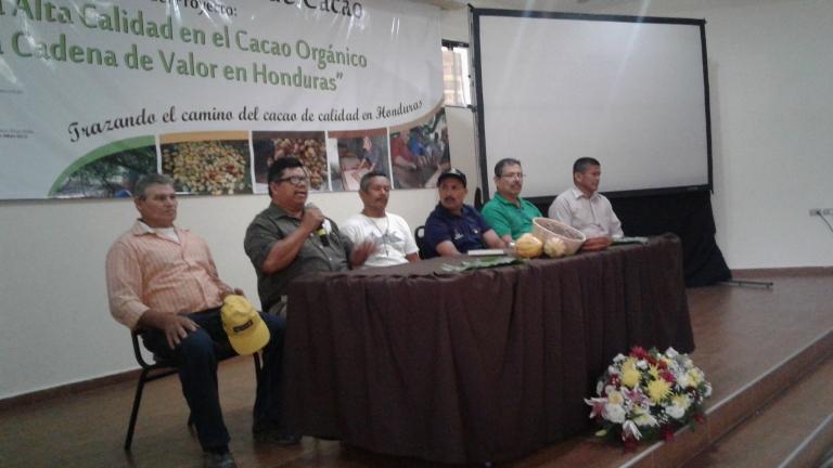 cacao_hondureño_calidad3