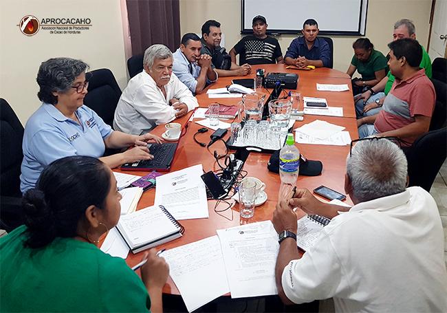 Reunión de Junta Directiva APROCACAHO